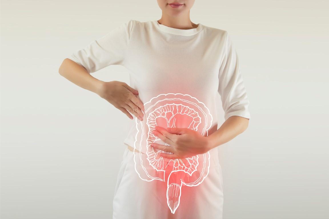 probiotiques pour maigrir
